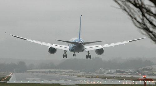 Рейс самолета «Белавиа» из Батуми задержан из-за птицы