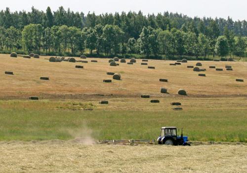 Предприятиям АПК Беларуси дана отсрочка в погашении долгов