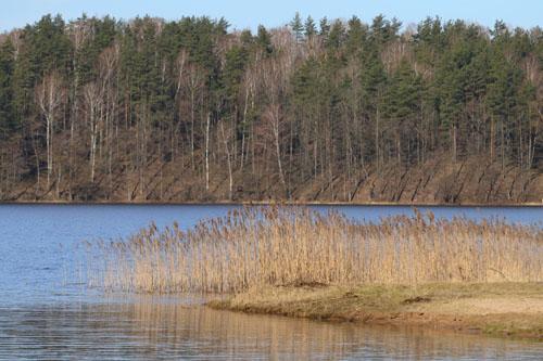 В Витебском районе утонул 14-летний подросток