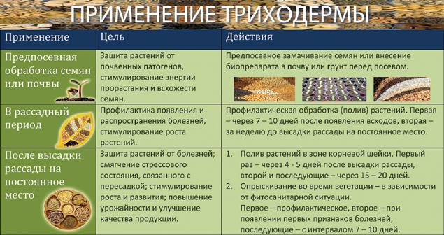 бактофит ск инструкция по применению - фото 11