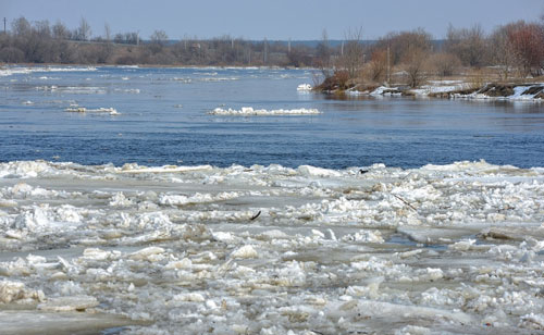 В реке Березина в Бобруйске 4 марта был обнаружен труп 13-летнего мальчика с телесными повреждениями