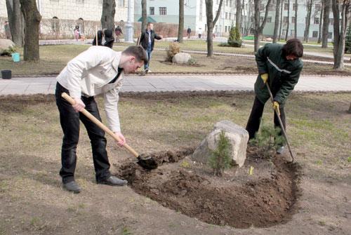 В субботу, 12 апреля, в Беларуси пройдет республиканский субботник, во время которого планируется навести порядок на рабочих местах