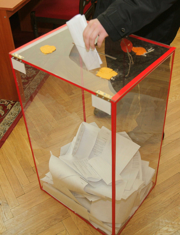 Началось досрочное голосование на выборах депутатов местных Советов