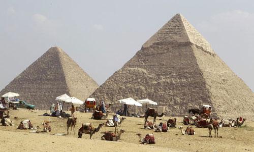 В Египте (провинции Каир, Гарбия, Дельта Нила и Северный Синай) наблюдается серьезное увеличение случаев заболевания свиным гриппом H1N1