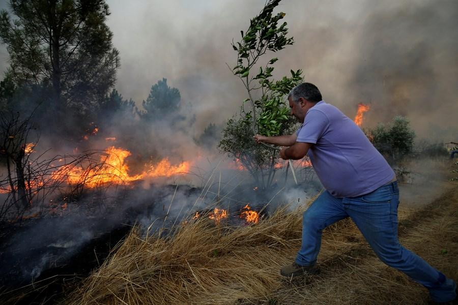 ВПортугалии из-за пожаров эвакуировали граждан 10 населенных пунктов