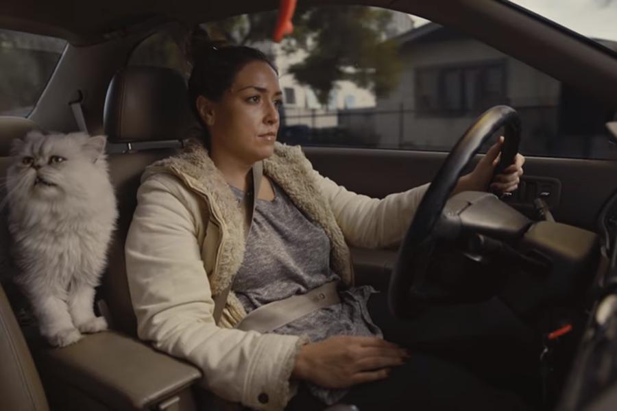 Любительский рекламный ролик помог реализовать старую Хонда дороже в40 раз