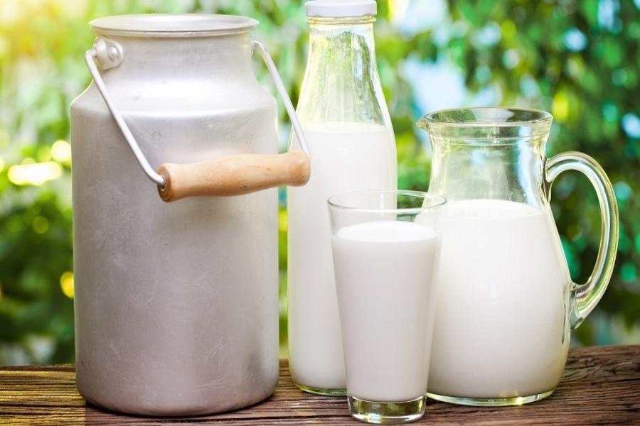 Республика Беларусь  сообщила  ожелании проверить русские  молочные учреждения