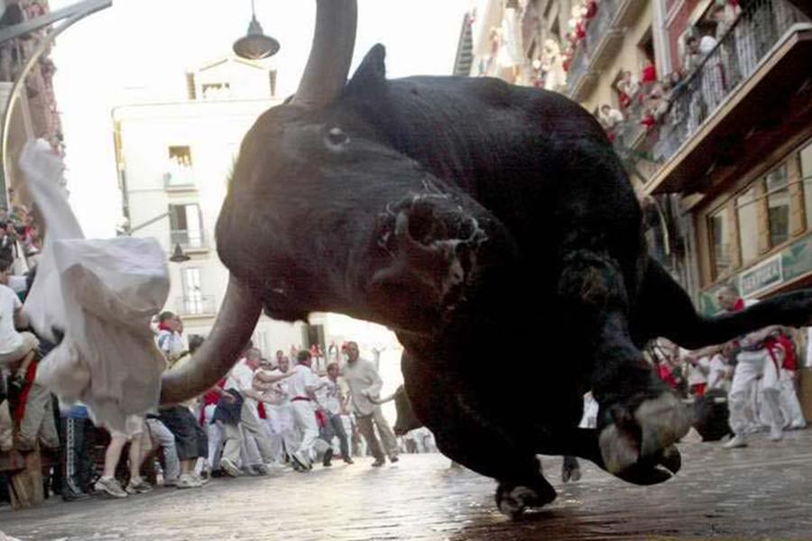 ВИспании вовремя уличного праздника бык насмерть забодал мужчину