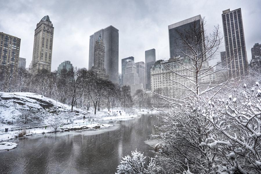 В основном парке Нью-Йорка 6 человек ушли под лед, делая селфи