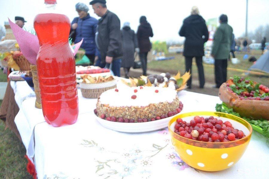 Клюквенный фестиваль в Ольманах впервые прошел в международном формате