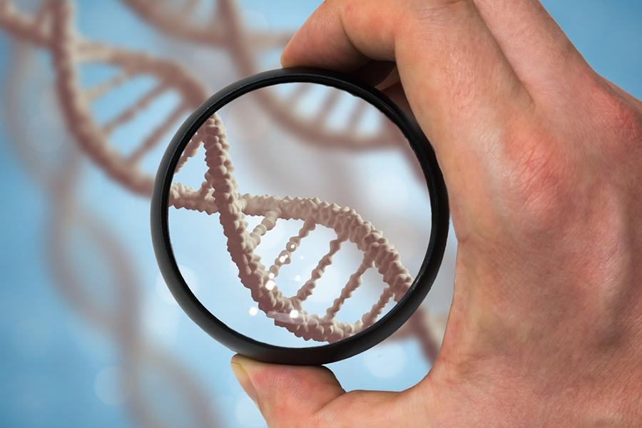 обнаружение ДНК микоплазмы