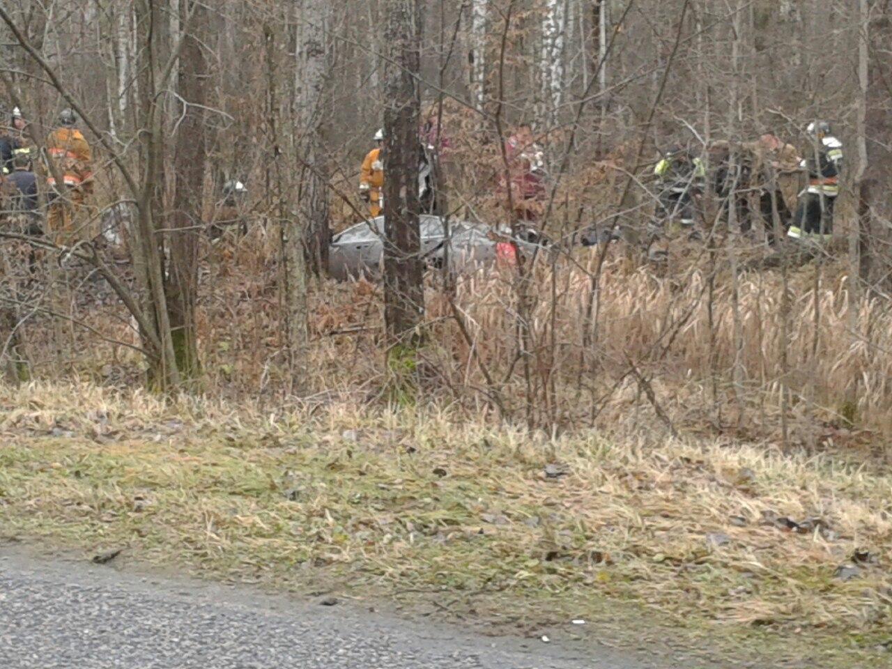 ВЖитковичском районе вДТП погибли трое человек