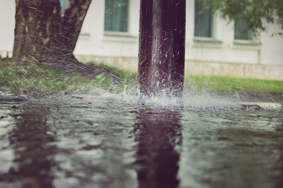 Будет тепло, однако дождливо— Погода вИжевске