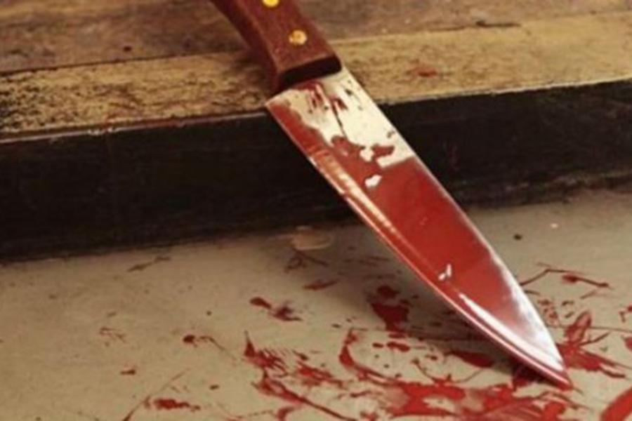 УВД: в Столинском районе тракторист убил сына