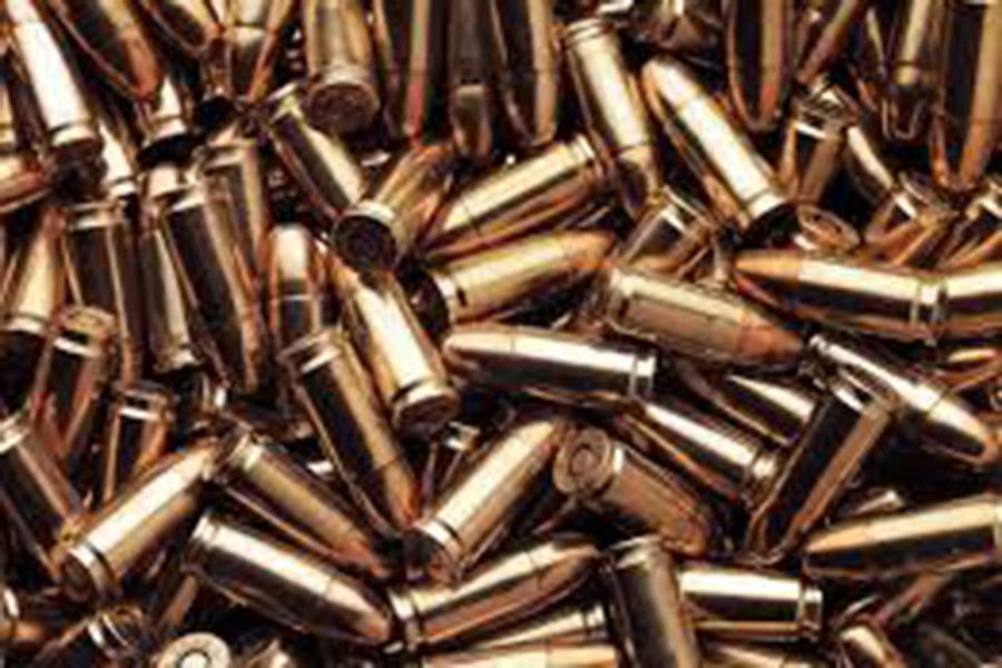 У пенсионера в Пружанском районе изъят боевой арсенал с гранатами и минами