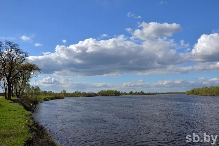 В Пинске на Припяти спасавший девушку парень утонул сам