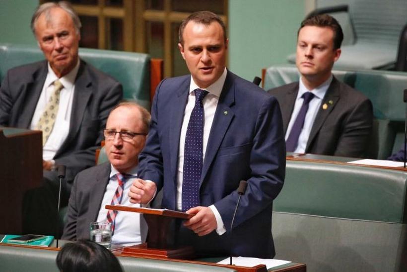 Австралийский депутат сделал предложение своему партнеру на совещании парламента