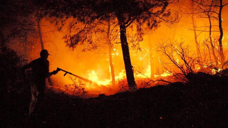 ВКалифорнии идет массовая эвакуация из-за природных пожаров