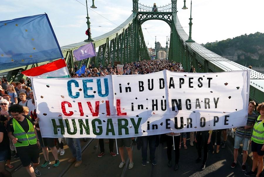 ВВенгрии устроили акцию протеста против закона обобразовании