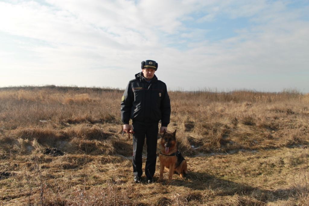 Собака Боня помогла задержать вора-рецидивиста, который угрожал милиционеру ружьем