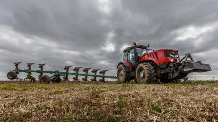 Картинки по запросу уборку зерновых сдерживают дожди фото