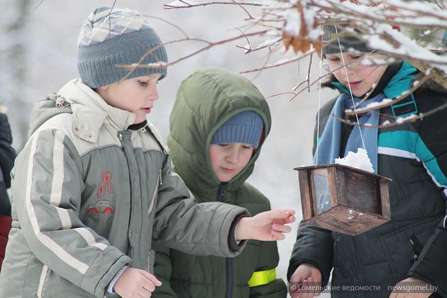 Экологическая акция «Угощаем птиц ибелок» проходит вГомеле