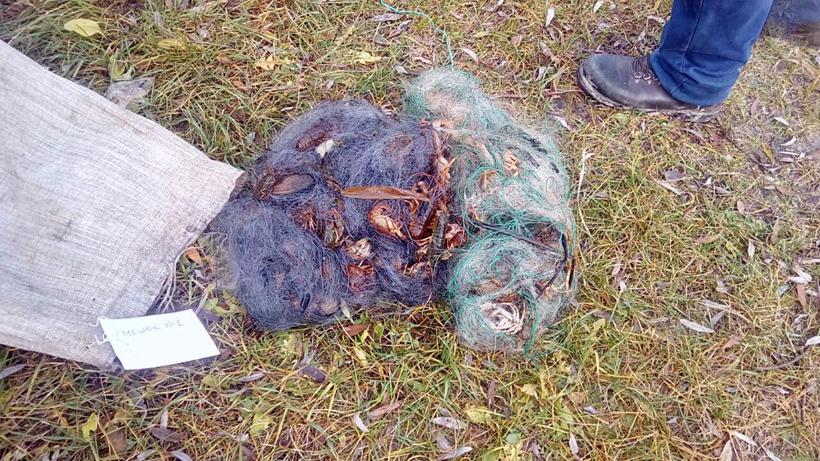 В Малоритском районе задержали браконьеров с большим количеством раков