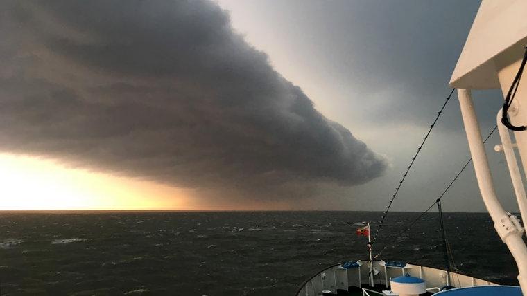 В германском Гамбурге бушевал торнадо, есть жертвы