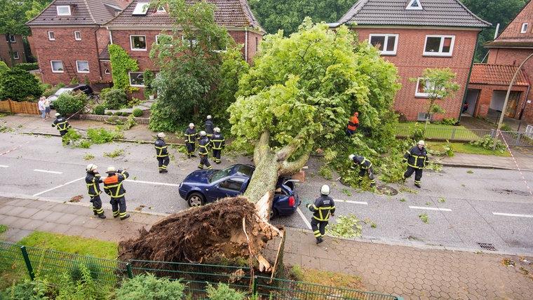 ВГермании из-за торнадо прервали движение поездов