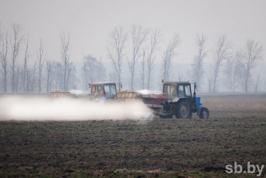 Лунинецкий райагросервис неправильно внес в почвы почти 2 тысячи тонн доломитовой муки