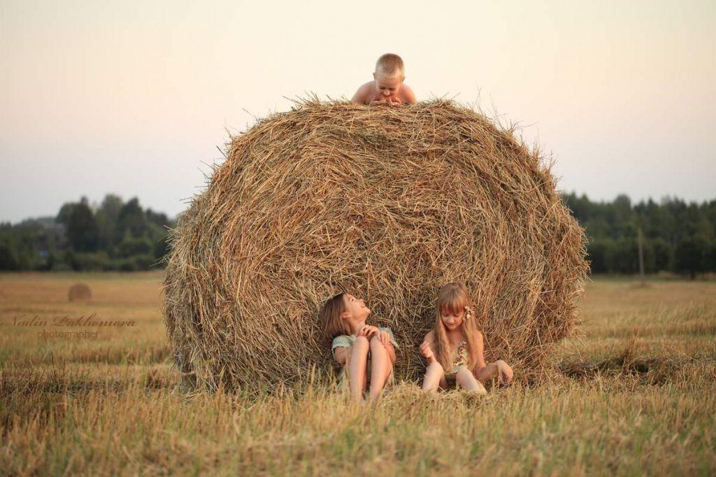 Теплая погода возвратится вБеларусь вконце недели