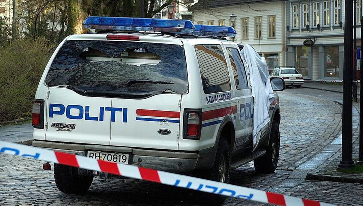 Милиция Норвегии объявила оразоблачении крупнейшей сети педофилов
