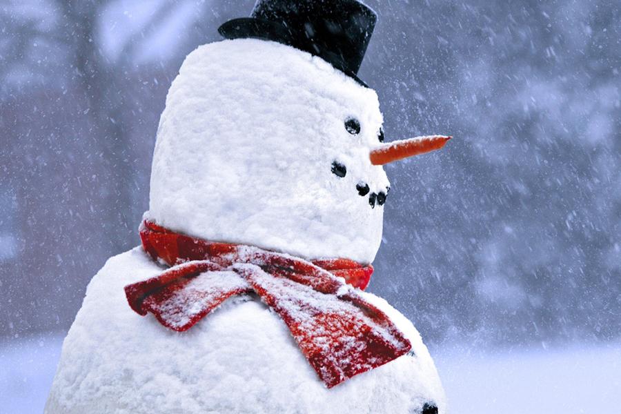 Машинист поезда вФРГ применил экстренное торможение из-за снеговика