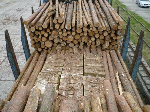 За год в Бресте задержали 14 вагонов с лесом, в котором прятали сигареты