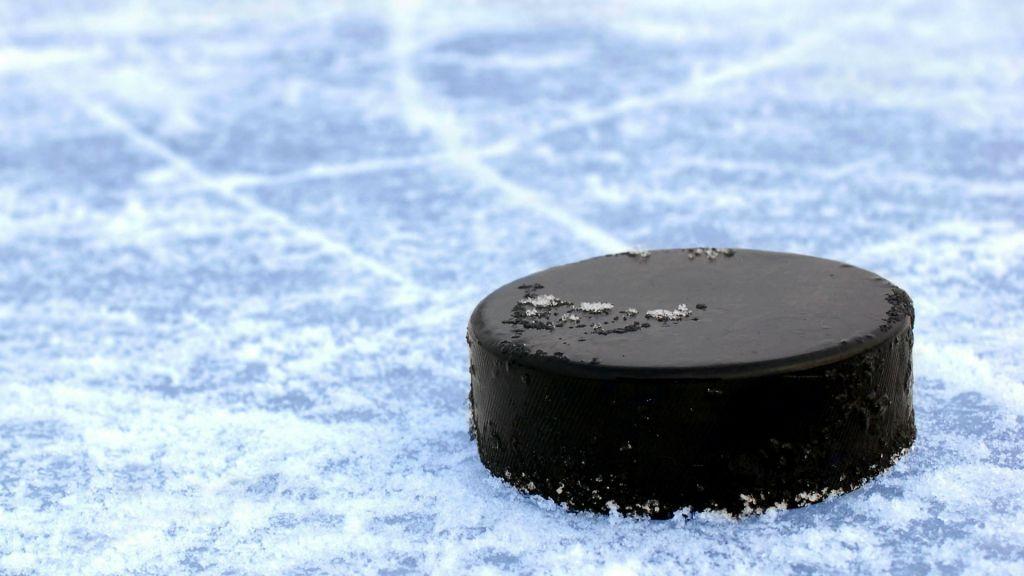 Хоккей: вчемпионате КХЛ «Динамо» уступил «Сочи»