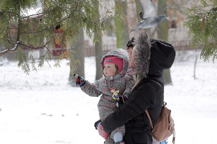 Наименее доллара: вРеспублике Беларусь возрастут пособия надетей до 3-х лет
