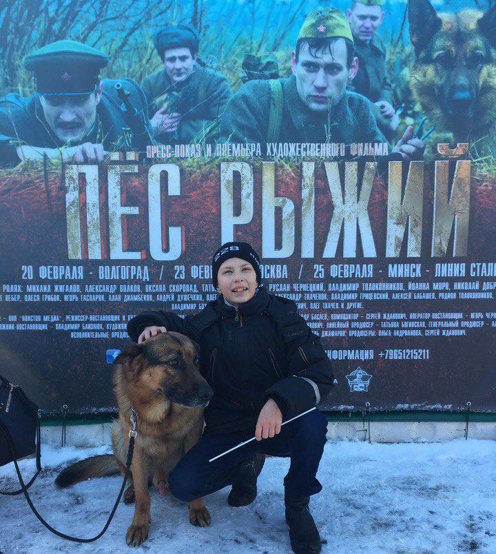 Граждане Волгограда первыми в РФ и Республики Беларусь поглядели фильм «Пес Рыжий»