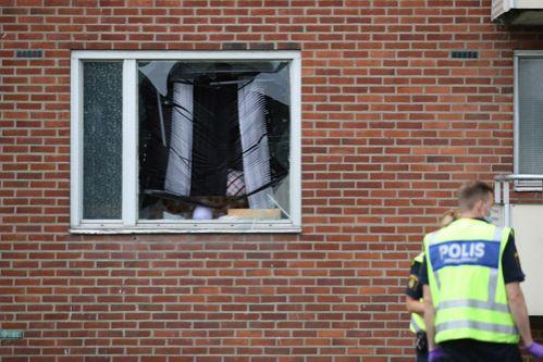 ВШвеции ребенок 8 лет умер отвзрыва гранаты