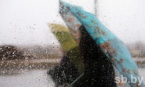 Вовторник в Белоруссии ожидаются дожди исильный ветер