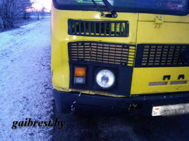 Ученический автобус, везущий детей, сбил женщину вКобринском районе
