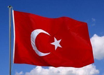 Милиция задержала подозреваемого впричастности катаке навостоке Турции