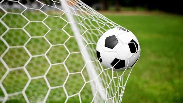 Белорусская федерация футбола обсудит склубами возможность создания профессиональной лиги