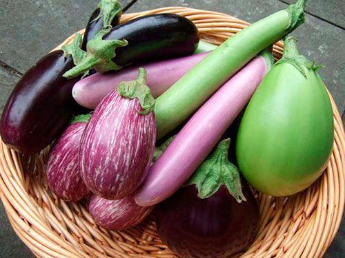 схема простой почему на плодах перца появился фиолетовый оттенок Акромегалия гипофизарный