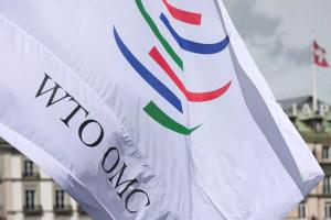 Кобяков: членство в ВТО будет способствовать усилению позиций Беларуси в мировой торговле