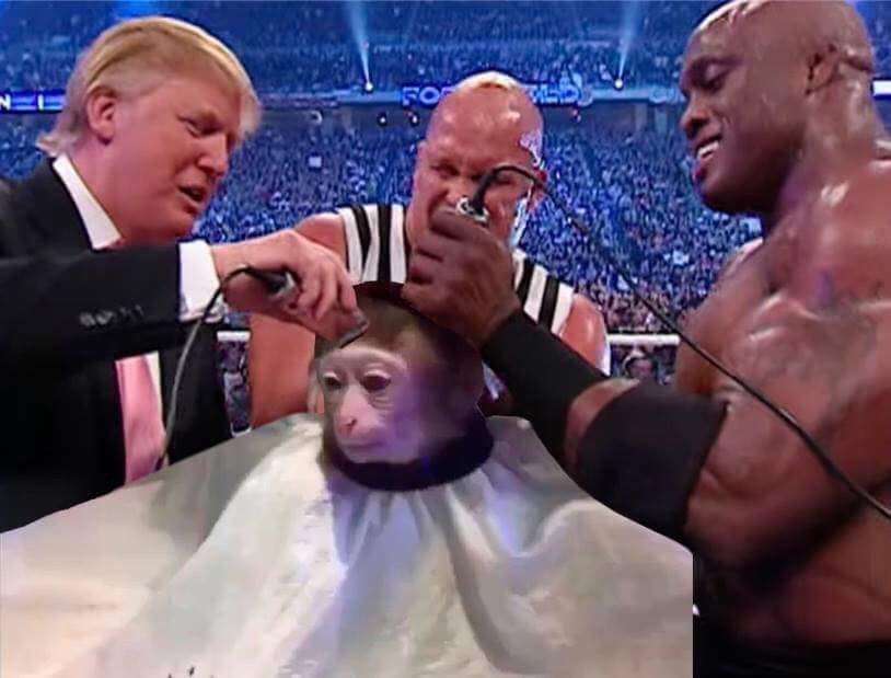 данных обезьяна в парикмахерской картинки для гостиной оптимальное