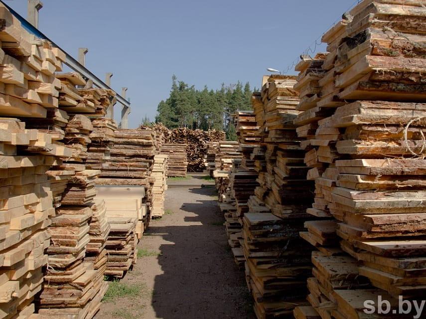 В Пинском районе лесничий провернул сделку с продукцией на сумму более семи тысяч рублей