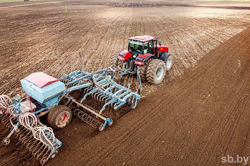 Вплоть до лишения должностей: Лукашенко требует от губернаторов качественного проведения полевых работ