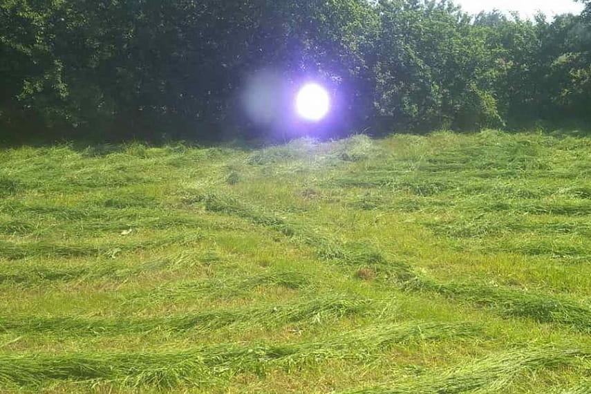 В агрогородке Брашевичи Дрогичинского района в один из дворов вкатилась... шаровая молния