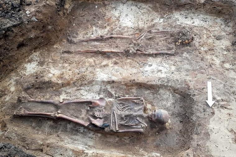 При благоустройстве территории рядом с Гольшанским замком обнаружили могильник XIII—XIV веков