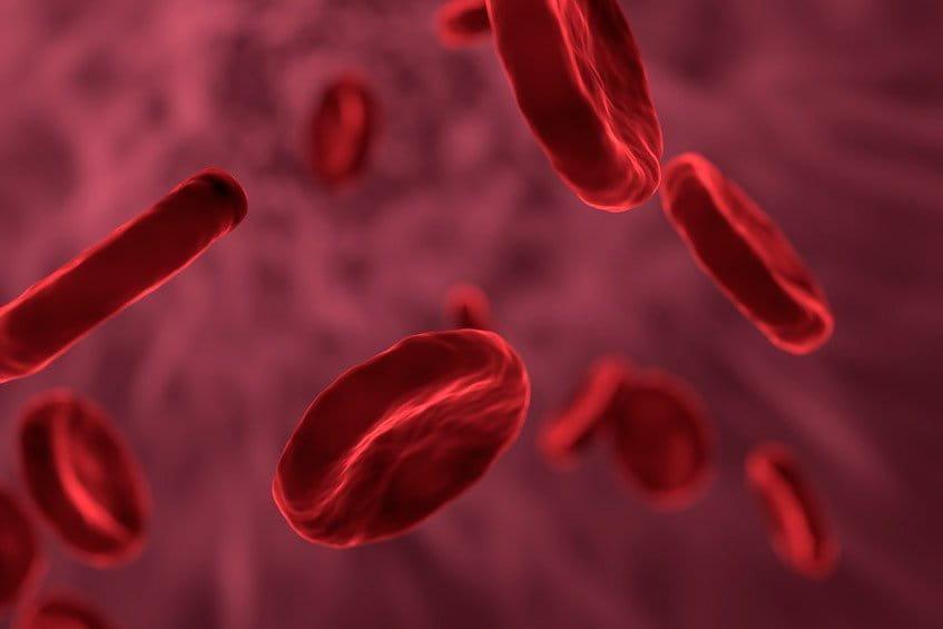 Анализ крови сои 7